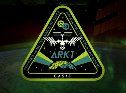 CASIS ARK1 Patch